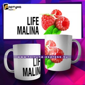 Прикольная кружка Fashion Smile - Life Malina